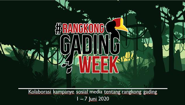 RANGKONG GADING WEEK